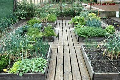 Looove the wooden pathways: Gardens Ideas, Wooden Walkways, Gardens Beds, En Carré, Wood Planks, Raised Beds, Squares Foot Gardens, Veg Gardens, Vegetables Gardens