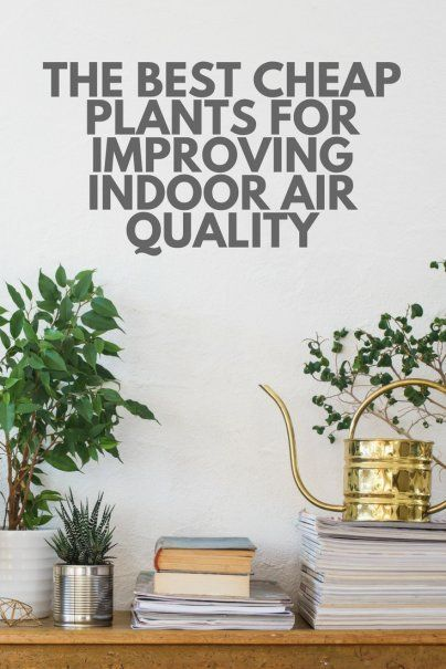 best 20 indoor air quality ideas on pinterest air. Black Bedroom Furniture Sets. Home Design Ideas