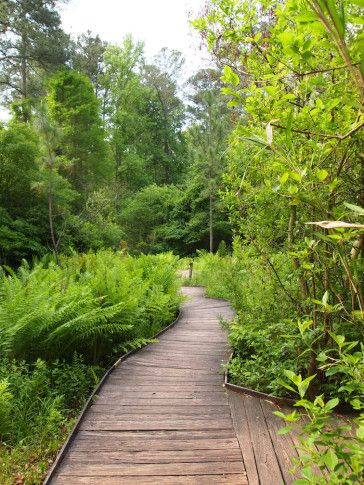 34 Best 2014 Tour Images On Pinterest Chapel Hill Spring Garden And Beautiful Gardens