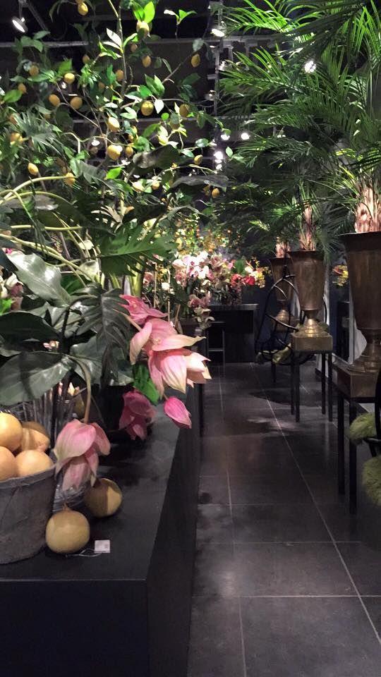 Op inkoop bij Silk-ka #zijden #Bloemen in #Hengelo
