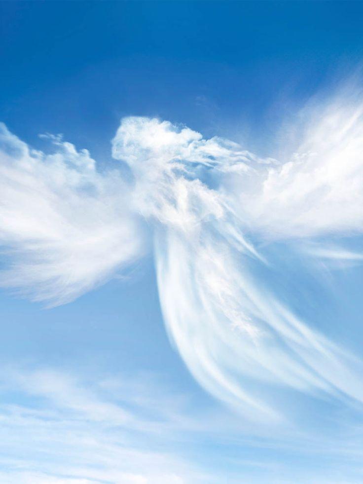 Engel sind verlässliche Gesellen. Sie wachen über unsere Träume, sie begleiten uns im Alltag. Experten zufolge hat jeder einen