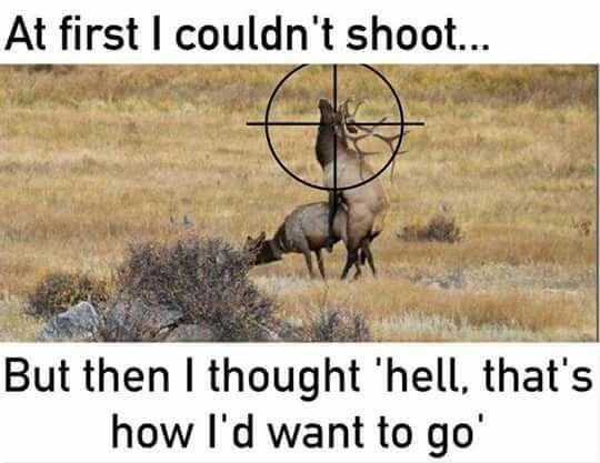 deer hunting pictures naughty
