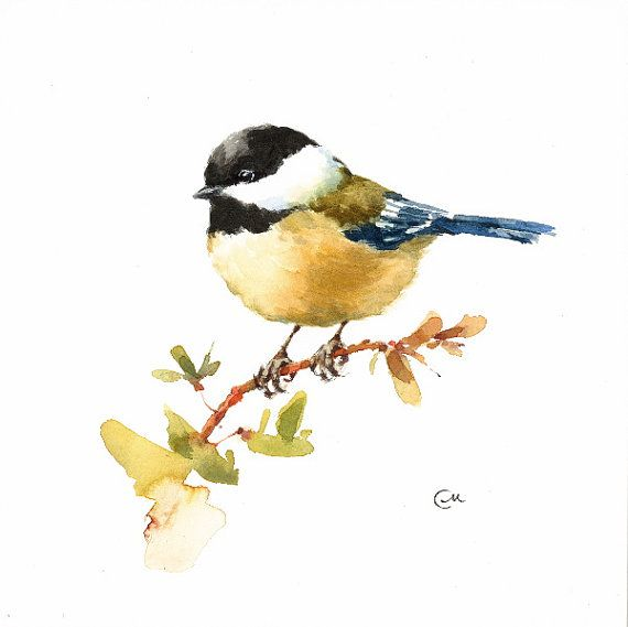 Chickadee Original Watercolor Tit Bird Painting by CMwatercolors                                                                                                                                                                                 More