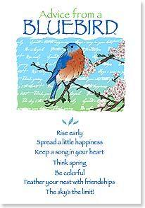 Birthday Card - Birthday Advice From A Bluebird   Your True Nature®   60271   Leanin' Tree