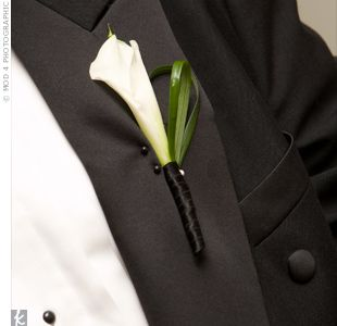 elegant calla lilly in black ribbon