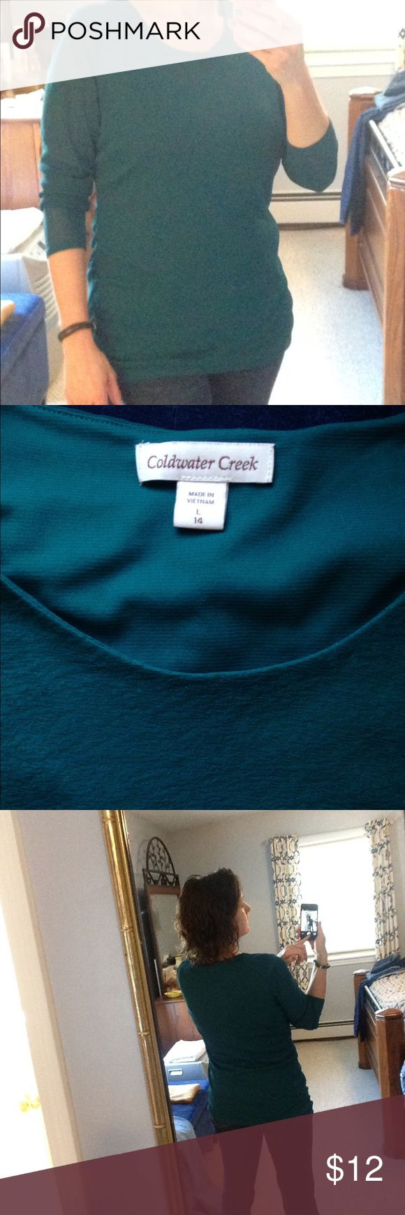 Coldwater Creek long-sleeve top EUC Coldwater Creek top, flattering ruched sides,  lined front and back, sheerer sleeves.  Wear with jeans or dress it up! Coldwater Creek Tops Blouses