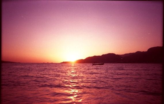 #ocean #beach #waves: Brazil, Ocean Beach, Favorite Pics, Beach Waves, Favorite Places, Sunsets, Purple Sunset, Pink