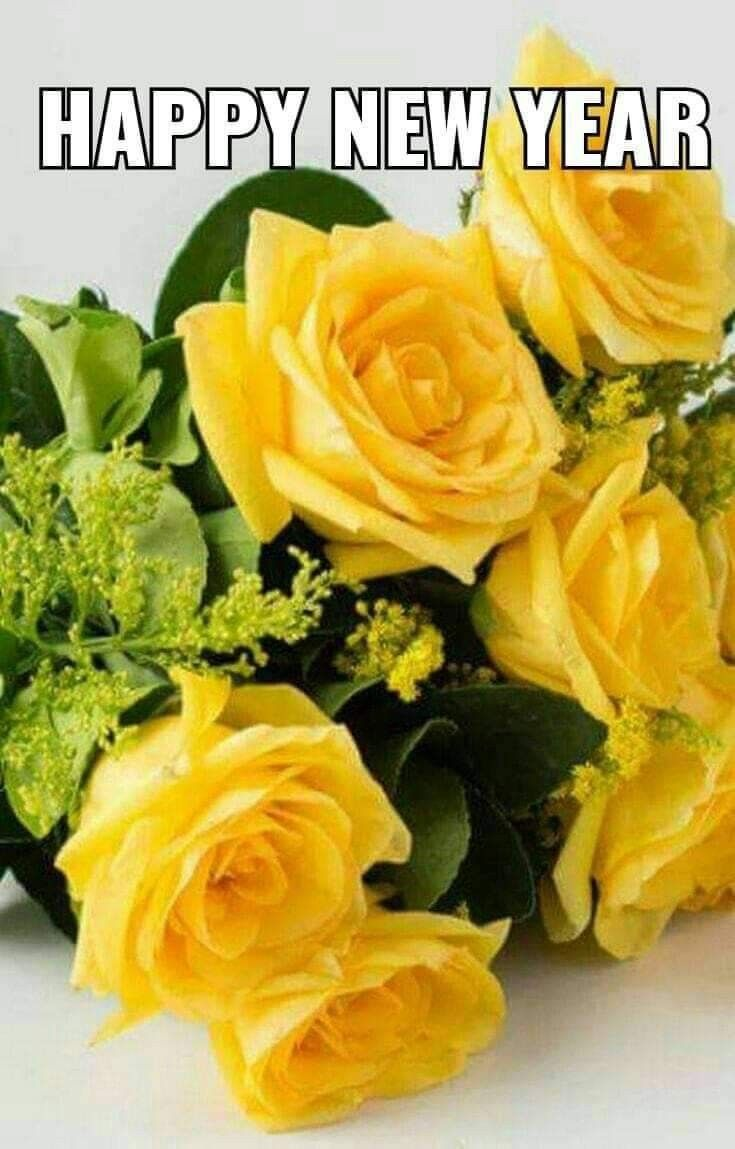 Pin By Tammy Hosey On Rose Garden Yellow Roses Beautiful Flowers Beautiful Roses