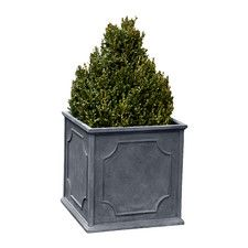 Phyllis Plastic Planter Box