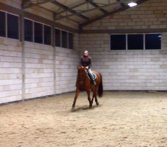 Projekt: Skoczny, wiosenny debiut - Wspieram.to https://wspieram.to/1475-skoczny-wiosenny-debiut.html #horse #sport #koń