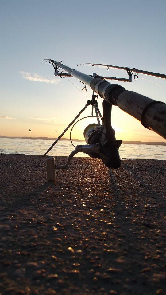 Fishing/Horgászat