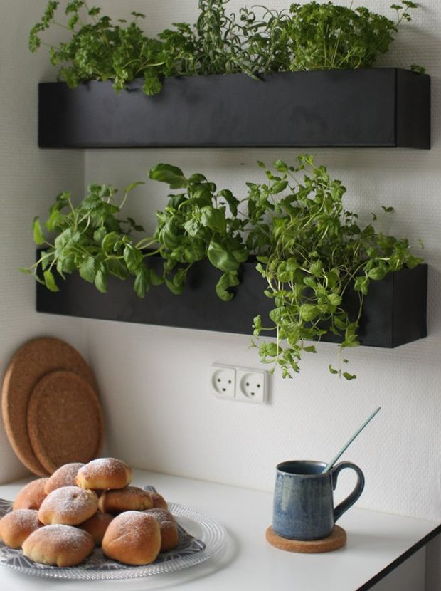 Replace common rustic wooden planters with wall-mounted black boxes in the kitchen.