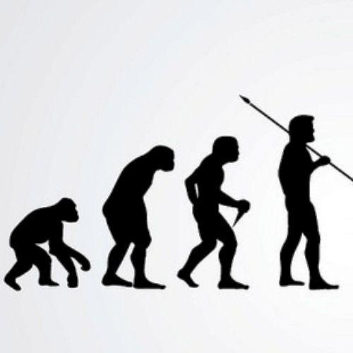 El linaje humano es evolucionario. Una secuencia de especies forman una línea directa de descendencia.