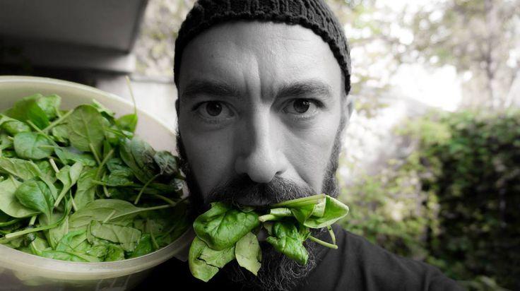 Frugivor de aproape 6 ani, muzician, calator profesionist, tata mandru, vegan super informat in domeniul nutritionismului, influencer de top in domeniul veganismului in Romania. Practic, daca esti …
