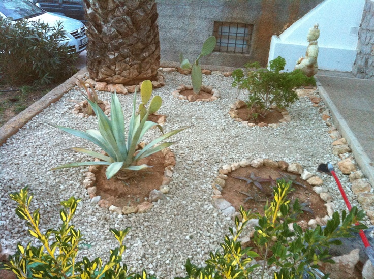 Our cacti garden. Here we collect cacti we have found on the island.  Always in progress!