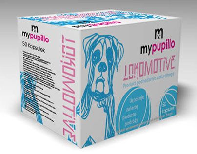 "Check out new work on my @Behance portfolio: ""my pupilo box"" http://be.net/gallery/46080043/my-pupilo-box"