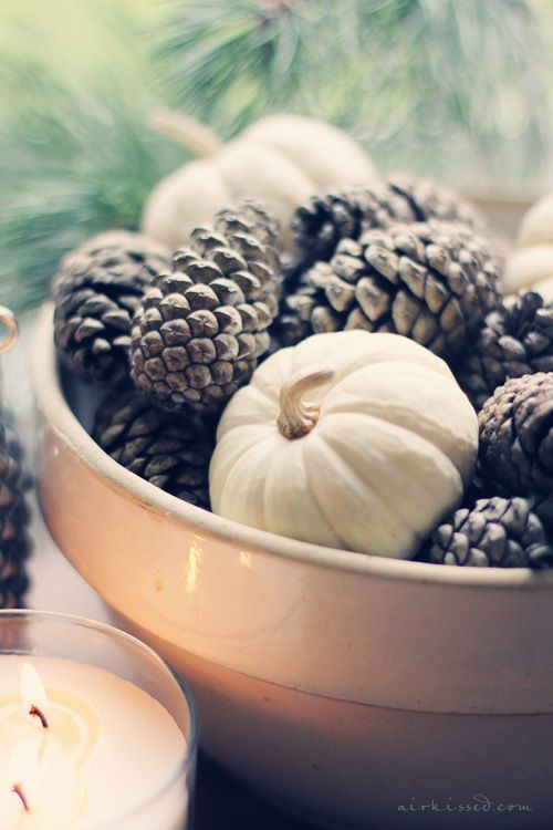 Mini white pumpkins and pinecones for fall centerpiece:
