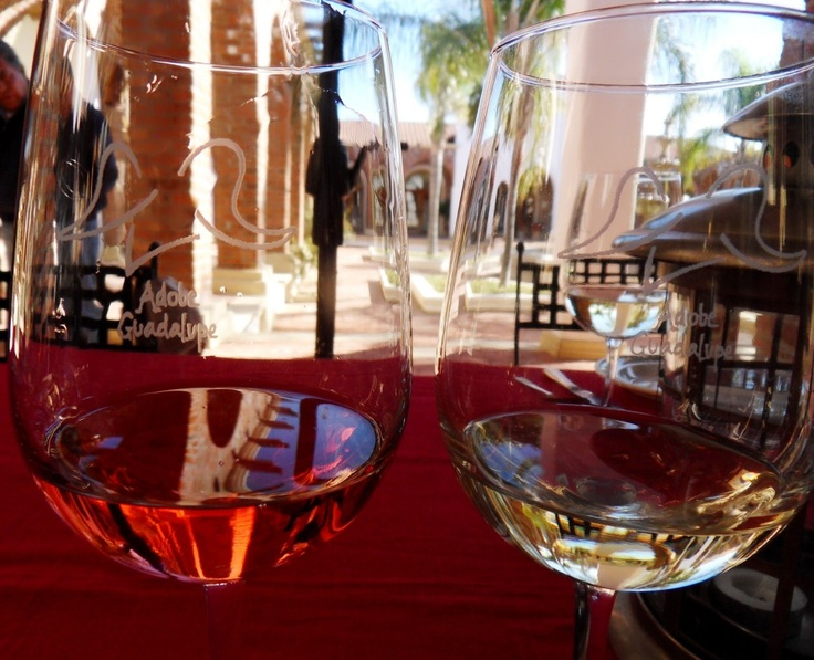 Adobe Guadalupe's wines are among the finest produced in Mexico's wine country.
