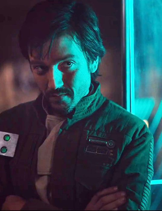 Star Wars Rogue One (Diego Luna) I have no idea what your name is (yet), Captain but...helloooo