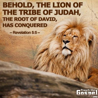Behold the lion of the Tribe of Judah, the root of David, has conquered!  Revelation 8:5