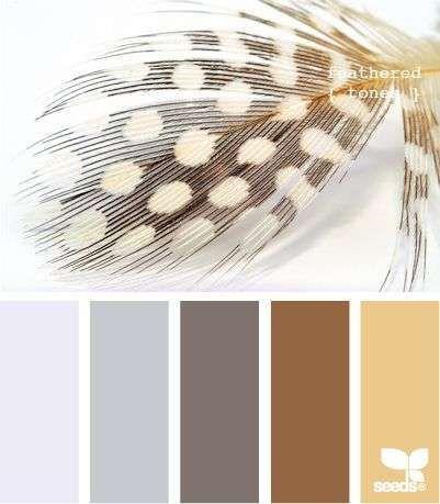 Kleurinspiratie veren - Woontrendz