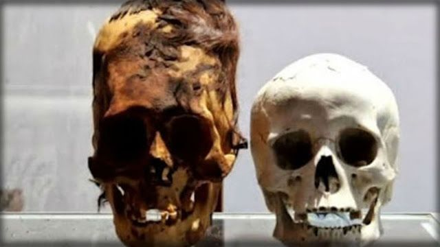 AWAKENING FOR ALL: Alien Skulls found in Antarctica