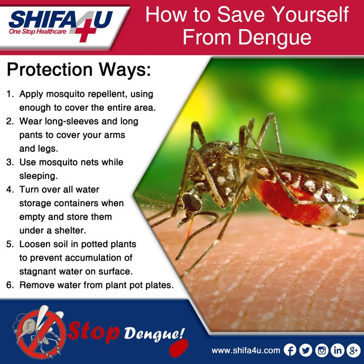 Don't Let Mosquitoes Ruin Your Life, Just An Ounce of Prevention is Worth a Pound of Cure. #dengue #fever #DengueFever #HighFever #Sick #sickness #mosquitoes #outbreak #season #killdengue #fightdengue #Health #healthcare #healthy #DigitalHealth #Shifa4u