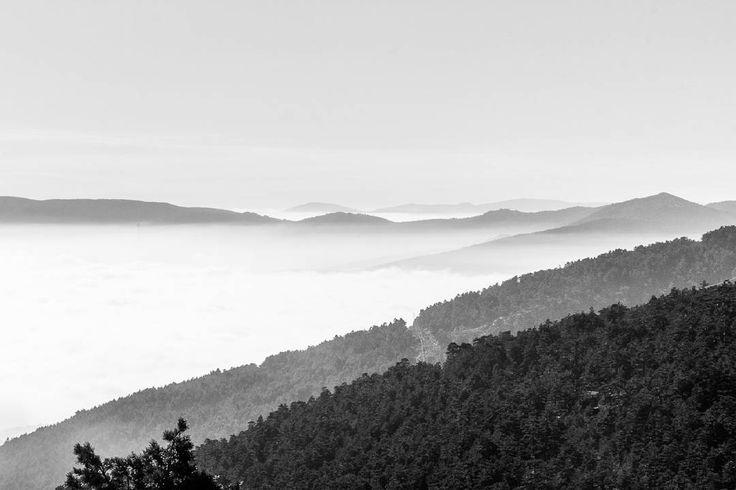 Walking above clouds  Puerto de Navacerrada Cercedilla, Spain 2017 Jordi NN . . . #Navacerrada #Cercedilla #Spain #clouds #mountains #bnw #blackandwhite #photography #2017 #landscape #blackandwhitephotography #jordinn