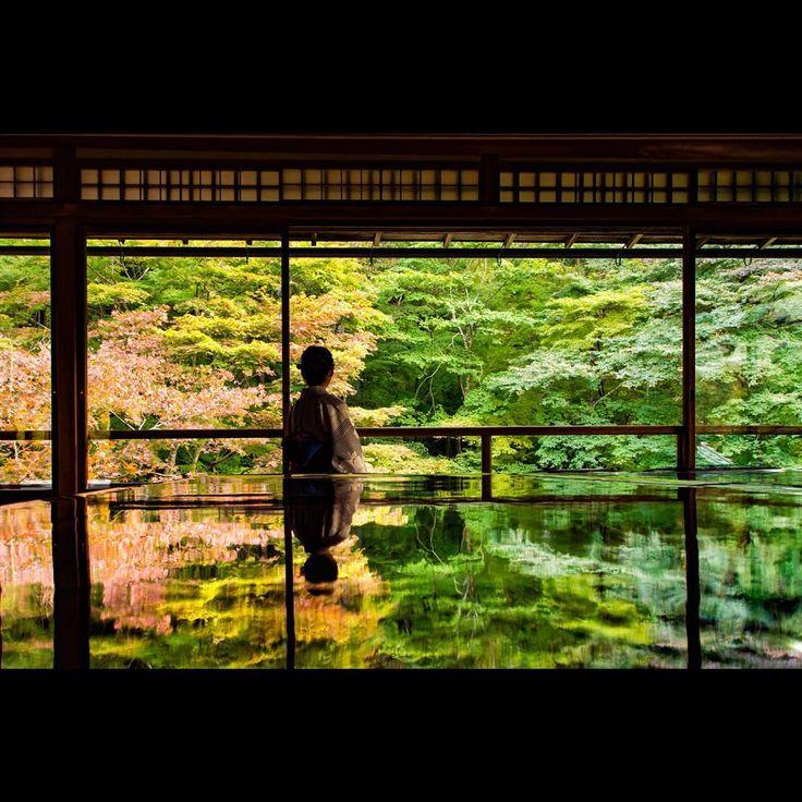 #京都#瑠璃光院#紅葉#リフレクション#reflection#寺院#庭#もみじ#秋#風景#自然#旅行#trip#観光#日本#japan_daytime_view#japan_photo #team_jp_#japan#kyoto#2016 ・ ・ ・ 無計画一人旅。 京都瑠璃光院秋の特別拝観へ、そんなに混んでなくてゆっくり見れました。