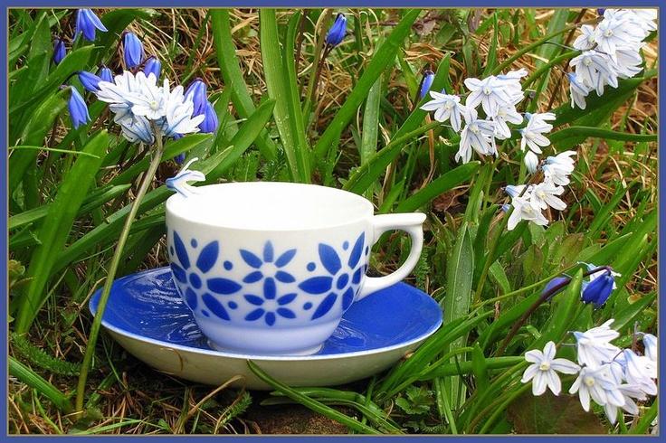 Arabia ARMI coffee cup with morning dew.