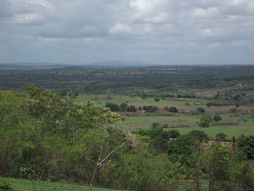 Coité do Nóia (ALAGOAS) BRASILE | Coité Do Noia, Alagoas » Mapas|Fotos|Imagens de Satélite ...