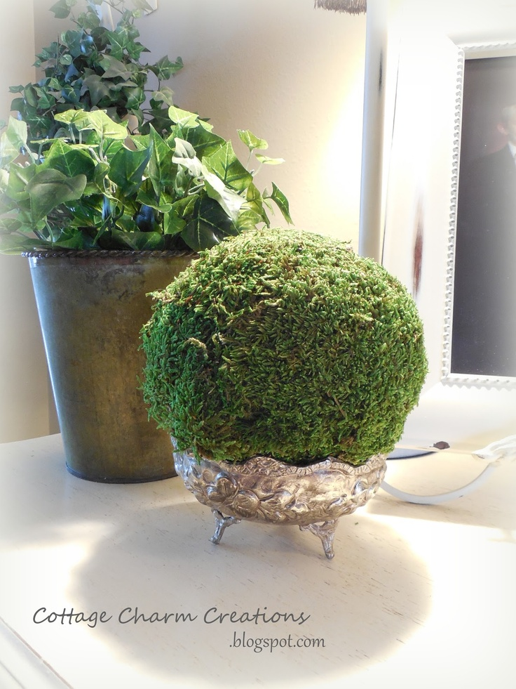 Decorative Moss Balls Beauteous 30 Best Diy Moss Balls & Topiaries Images On Pinterest  Bricolage Review