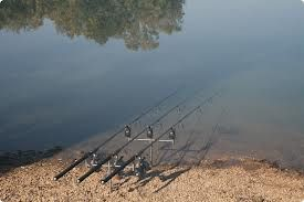 Choosing the best fishing rods for carp fishing. #legalrider