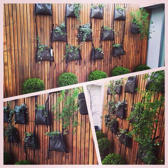 Un mur végétal créé avec des Sac x Sac BACSAC qui s'accrochent entre eux !