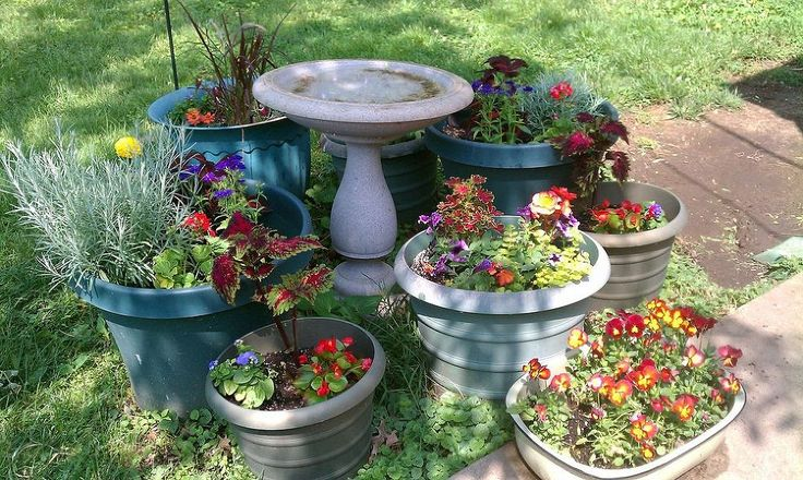 110 Best Images About Gardening Planters On Pinterest