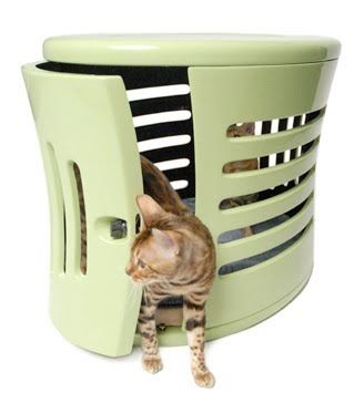 Uma das vantagens atribuídas aos gatos em relação aos cães é que os felinos urinam nas caixinhas e não precisam ser levados para passear. M...