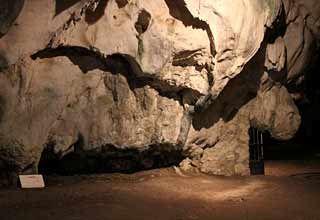 Grotte de la Vache,  Meyrals - Ariège - Pyrénées . La forme générale de la concrétion naturelle  évoque une vache de profil, la tête à droite