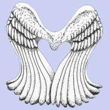 Τα Φτερά Είναι για να Πετάς - Χόρχε Μπουκάι