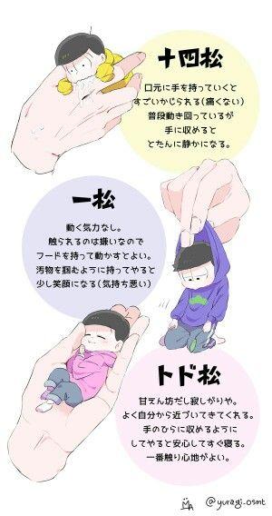 Mini-sized Matsus: Jyushimatsu, Ichimatsu, Todomatsu.