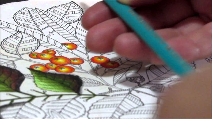 41 - frutinhas Tutorial Como pintar folhas com lápis de cor Jardim Secreto - How to paint…