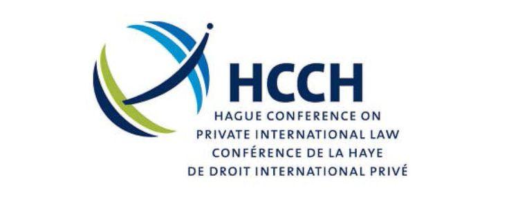 La Convention de La Haye de 1993 sur l'adoption internationale (« Convention de 1993 ») instaure des normes et des garanties pour la protection des enfants adoptés à l'étranger. Pour que ces normes et ces garanties soient respectées, divers professionnels...