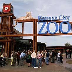 KC Zoo