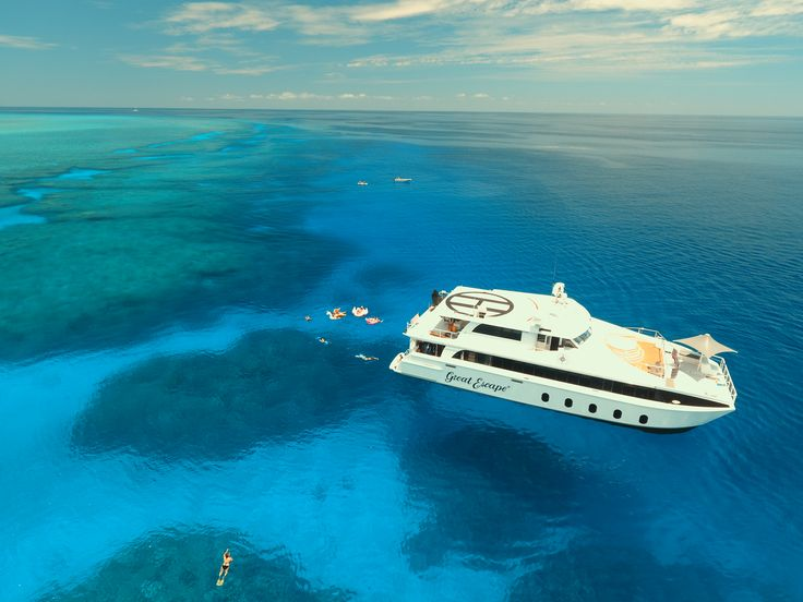 Be part of a small group of privileged guests to experience a 5 or 7 night diving adventure off the coast of Broome, Western Australia every November.