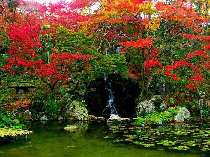 Микромиры: японские сады камней - Ярмарка Мастеров - ручная работа, handmade