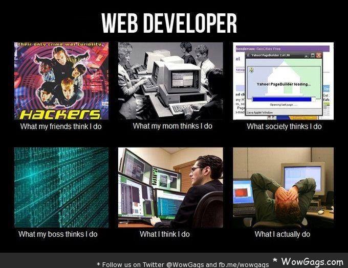 Web Developer - Expectation vs Reality | Ninjaz Jokes ...