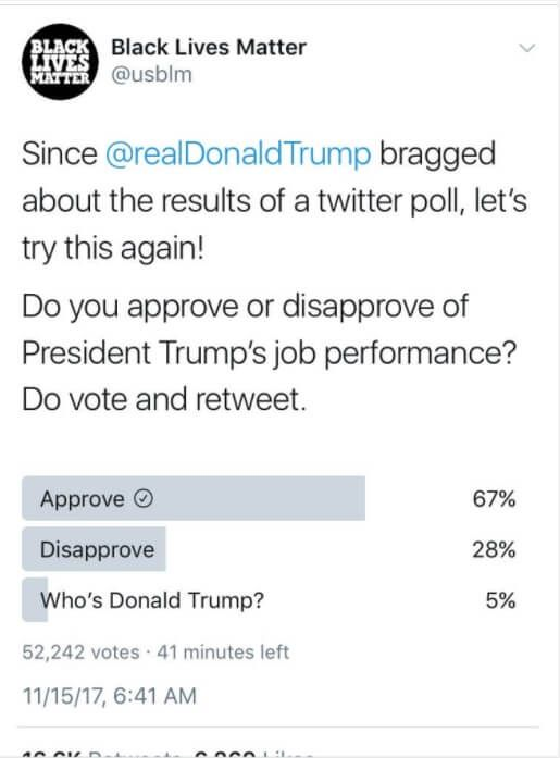 The Black Lives Matter group suffered an embarrassing loss when it posted a poll that asked about President Donald Trump's job performance, and the backing for the president was overwhelming. The poll, first put up on Twitter on Nov. 15 by the group, was posted three different times in the clear hope that most respondents…