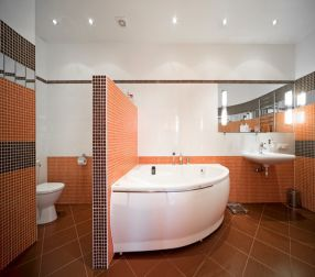 8 Best Images About Bathroom Remodel Fremont On Pinterest  Cas Adorable When Remodeling Bathroom Where To Start Inspiration Design
