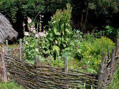 La permaculture, un jardin potager sans entretien