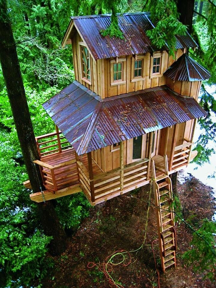 Build Charming Tree Houses By Yourself With These Diy Projects - Do It  Yourself Samples