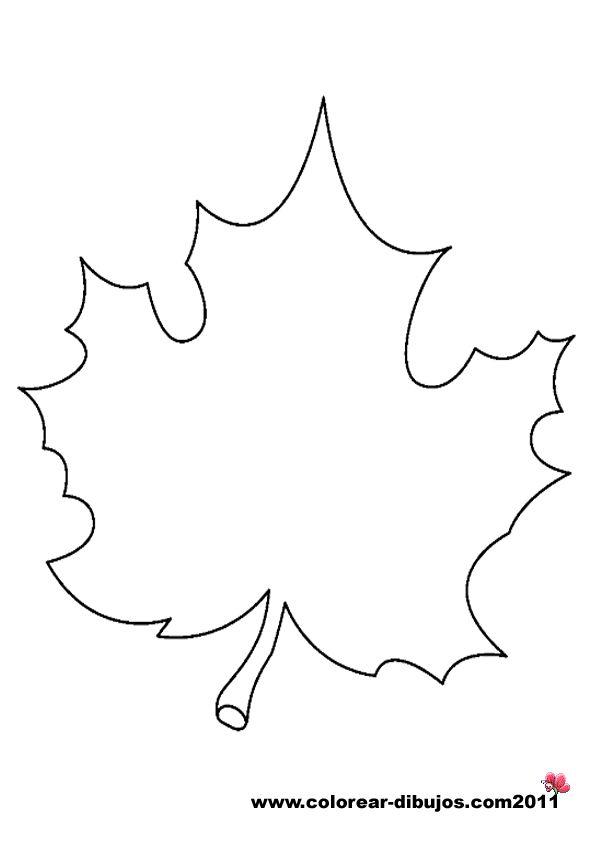 Dibujos de hojas de arboles para colorear y para imprimir | Coloring ...
